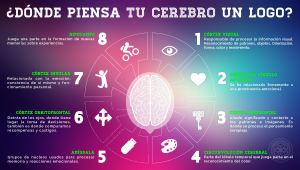 Neuromarketing, todo lo que debes saber